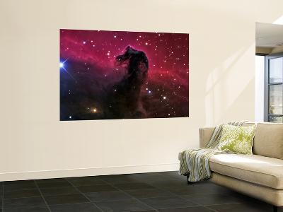 The Horsehead Nebula--Wall Mural
