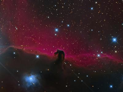 The Horsehead Nebula--Photographic Print