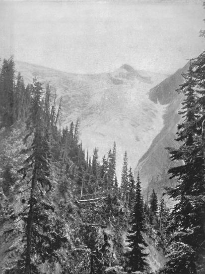 'The Illicilliwaet Glacier', 19th century-Unknown-Photographic Print