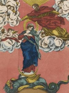 The Immaculate Conception of the Glorious Virgin Mary