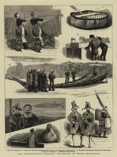 The International Fisheries Exhibition at South Kensington--Giclee Print
