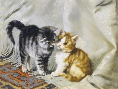The Introduction: Silver and Ginger Kittens-Julius Adam-Giclee Print