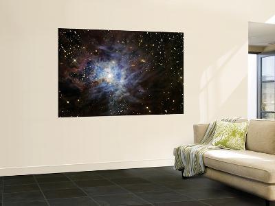 The Iris Nebula--Wall Mural