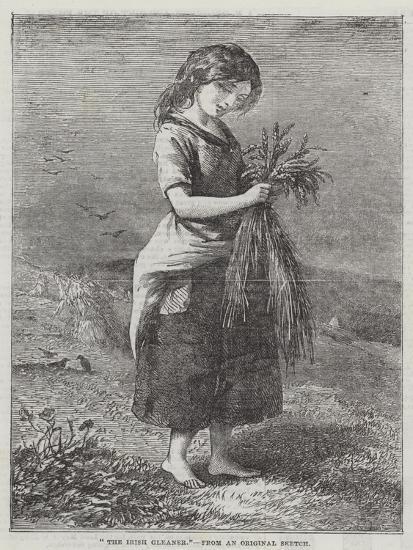 The Irish Gleaner--Giclee Print