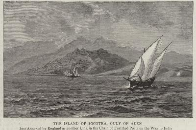 The Island of Socotra, Gulf of Aden--Giclee Print