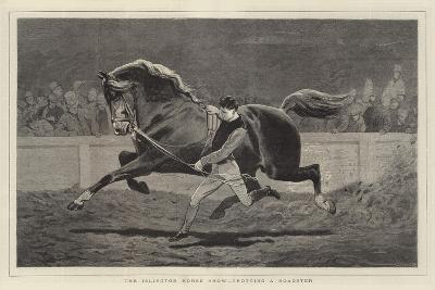 The Islington Horse Show, Trotting a Roadster-John Charlton-Giclee Print