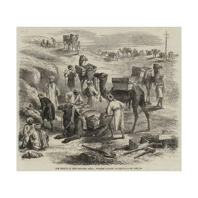 The Isthmus of Suez Maritime Canal, Workmen Loading Dromedaries--Giclee Print
