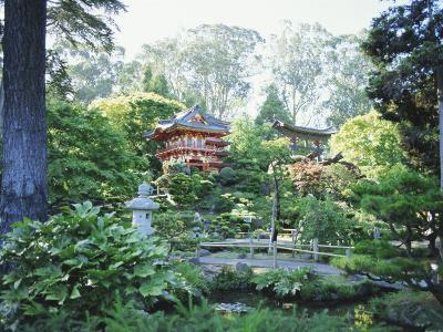The Japanese Tea Garden, Golden Gate Park, San Francisco, California, USA-Fraser Hall-Photographic Print
