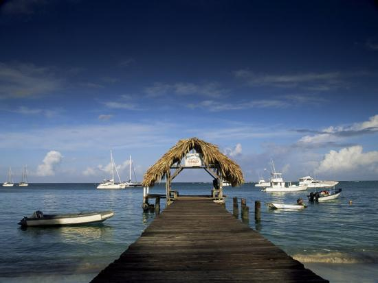 The Jetty, Pigeon Point, Tobago, West Indies, Caribbean, Central America-Julia Bayne-Photographic Print