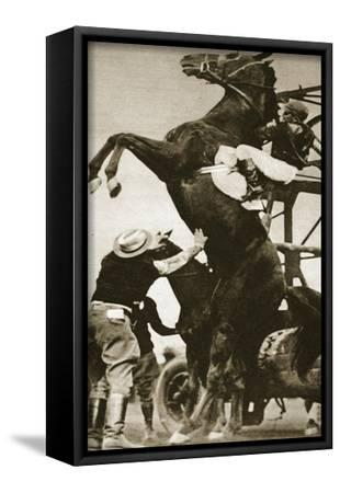 The Jockey Herbert Loses Control of His Horse at the Start of a Race in New York--Framed Stretched Canvas Print