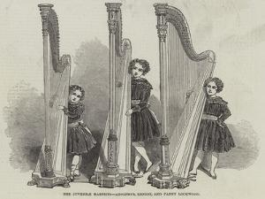 The Juvenile Harpists, Adolphus, Ernest, and Fanny Lockwood
