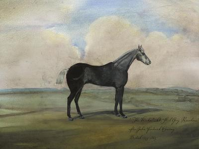 """The Kicker,"" a Steel Grey Racehorse-Naomi McCavitt-Art Print"