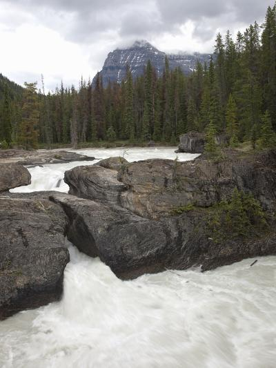 The Kicking Horse River Erodes a Natural Bridge in Limestone, Yoho National Park, Canada-Marli Miller-Photographic Print