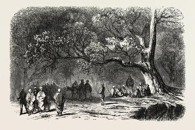 The Kief in the Islands of Princes, 1855--Giclee Print