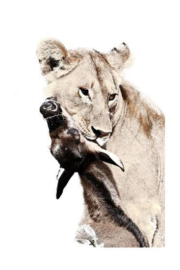 The Kill. A Lioness with a Blue Wildebeest Calf, Serengeti National Park, East Africa-James Hager-Premium Giclee Print