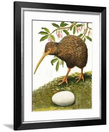 The Kiwi-R. B. Davis-Framed Giclee Print