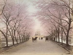 Akasaka, Tokyo by The Kyoto Collection