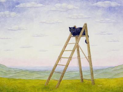The Ladder Cat-Ditz-Giclee Print