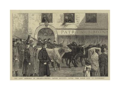 The Land Agitation in Ireland, Driving Captain Boycott's Cattle from Lough Mask to Claremorris--Giclee Print