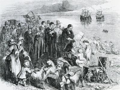 https://imgc.artprintimages.com/img/print/the-landing-of-the-pilgrim-fathers-with-furnishings-and-cattle-on-the-coast-of-new-england_u-l-pq7enk0.jpg?p=0