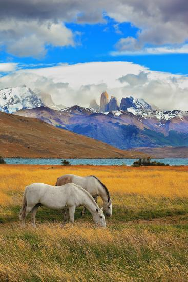The Landscape in the National Park Torres Del Paine, Chile. Lake Laguna Azul in the Mountains. on T-kavram-Photographic Print