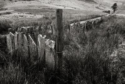 The Last Path-Doug Chinnery-Photographic Print