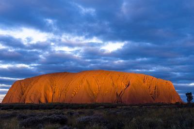 The Last Sunrays of Sunset Illuminate the Sandstone Massive of Uluru on the Desert Plain-Jason Edwards-Photographic Print