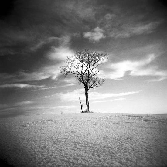 The Last-Craig Roberts-Photographic Print