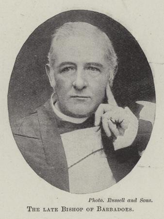 https://imgc.artprintimages.com/img/print/the-late-bishop-of-barbadoes_u-l-pvinhw0.jpg?p=0