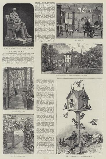 The Late Mr Darwin--Giclee Print