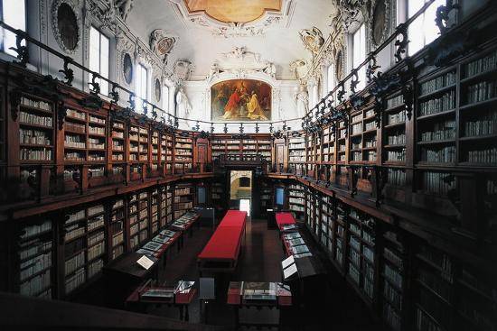 The Library of Classense Library--Photographic Print