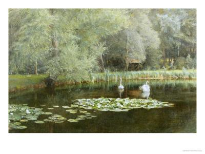 The Lily Pond-Edward R^ Taylor-Giclee Print