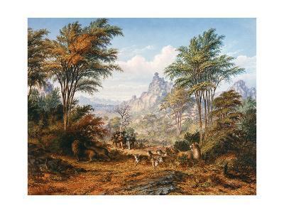 The Lion Family-Thomas Baines-Giclee Print