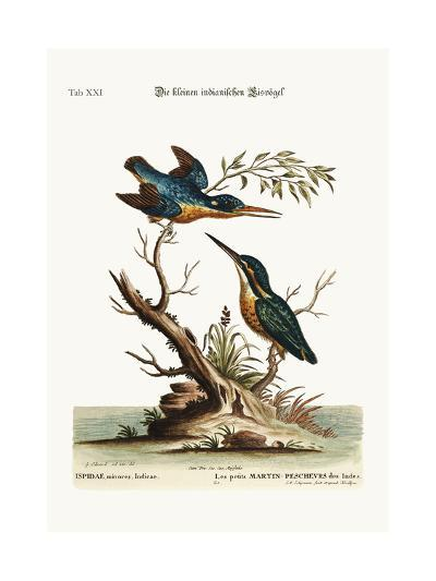 The Little Indian Kingfishers, 1749-73-George Edwards-Giclee Print