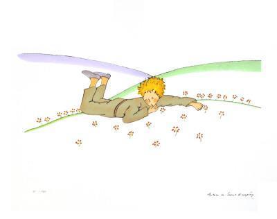 -2008 Antoine de Saint Exupery-The Little Prince Dreaming lg Le Reve