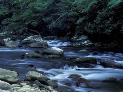 The Little River, Great Smoky Mountains National Park, Tennessee, USA-William Sutton-Photographic Print