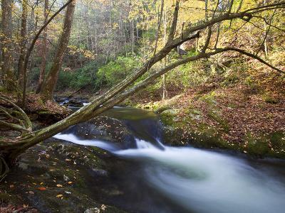 The Little River, Great Smoky Mountains National Park, Tn-Ian Shive-Photographic Print