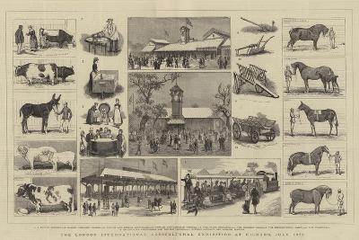 The London International Agricultural Exhibition at Kilburn, July 1879-Alfred Chantrey Corbould-Giclee Print