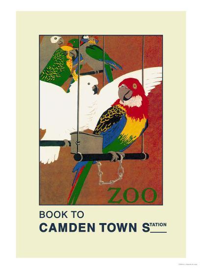 The London Zoo: Exotic Birds-S.t.c. Weeks-Art Print