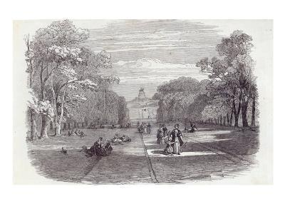 The Long Walk, Windsor, from The Illustrated London News, 14th November 1846--Giclee Print