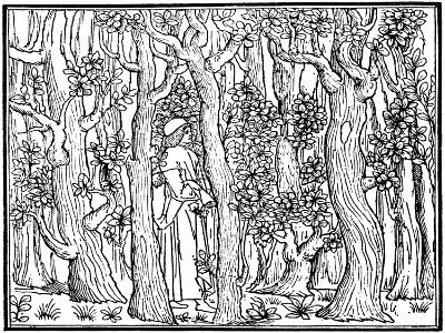 The Lover in the Wood, 1499--Giclee Print