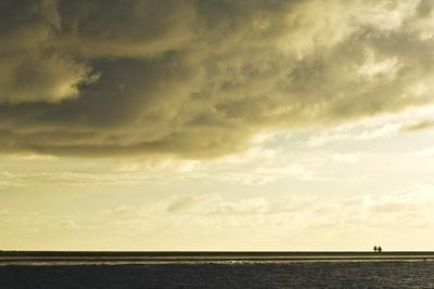 The Low Lying Starbuck Island in the Southern Line Island Chain-Mauricio Handler-Photographic Print