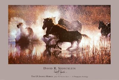 The LX Saddle Horses-David R^ Stoecklein-Art Print