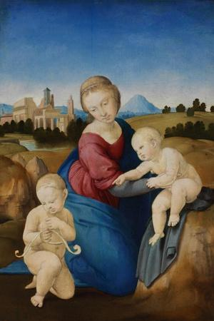 https://imgc.artprintimages.com/img/print/the-madonna-and-child-with-the-infant-baptist-the-esterhazy-madonn_u-l-pts1lk0.jpg?p=0
