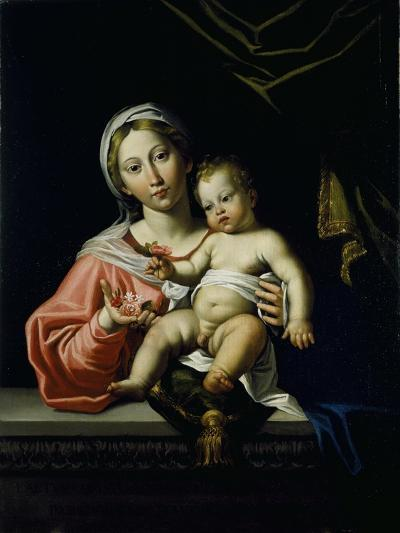 The Madonna Della Rosa, before 1627-Domenichino-Giclee Print