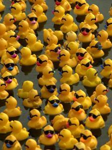The Make-A-Wish Foundation Releases Rubber Ducks into the Ocean