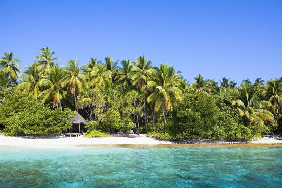 The Maldives, Sea, Palms, HŸtte (Hut)-Frank Lukasseck-Photographic Print