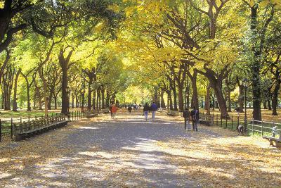 The Mall, Central Park, Manhattan, New York, USA-Peter Bennett-Photographic Print