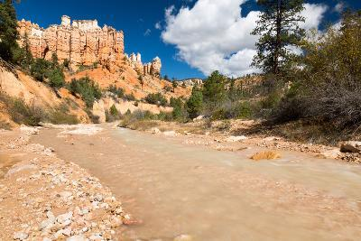 The Man-Made Creek Along The Mossy Cave Trail, Bryce Canyon National Park, Utah-Mike Cavaroc-Photographic Print