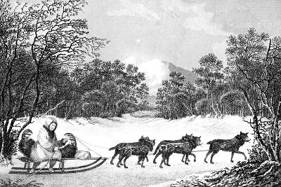 The Manner of Travelling in Winter in Kamtschatka, 19th Century- Sparrow-Giclee Print